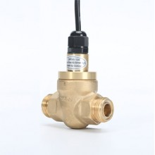 Oil flow switch GPF45-100-11