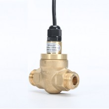 Oil flow switch GPF45-025-11